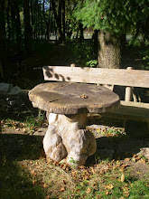 Photo: Ein wunderschöner Tisch am Wegesrand