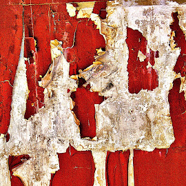 Paint drying by Gaylord Mink - Abstract Patterns ( red, scales, paint, wall )