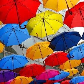 Umbrellas by Zoran Nikolic - Artistic Objects Other Objects ( umbrellas )