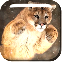 Winter Animals Live Wallpaper icon