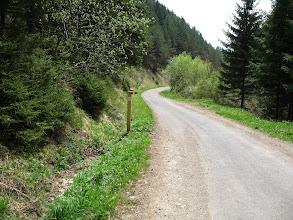 Photo: 05.Na szlaku w dolinie.