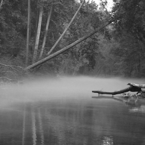 myst on the water by Skye Stevens - Landscapes Waterscapes ( water, stream, fog, river,  )