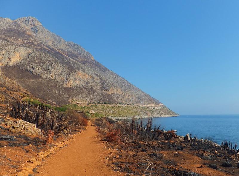 Sentiero di terra arsa dal sole e dal fuoco di annabus58