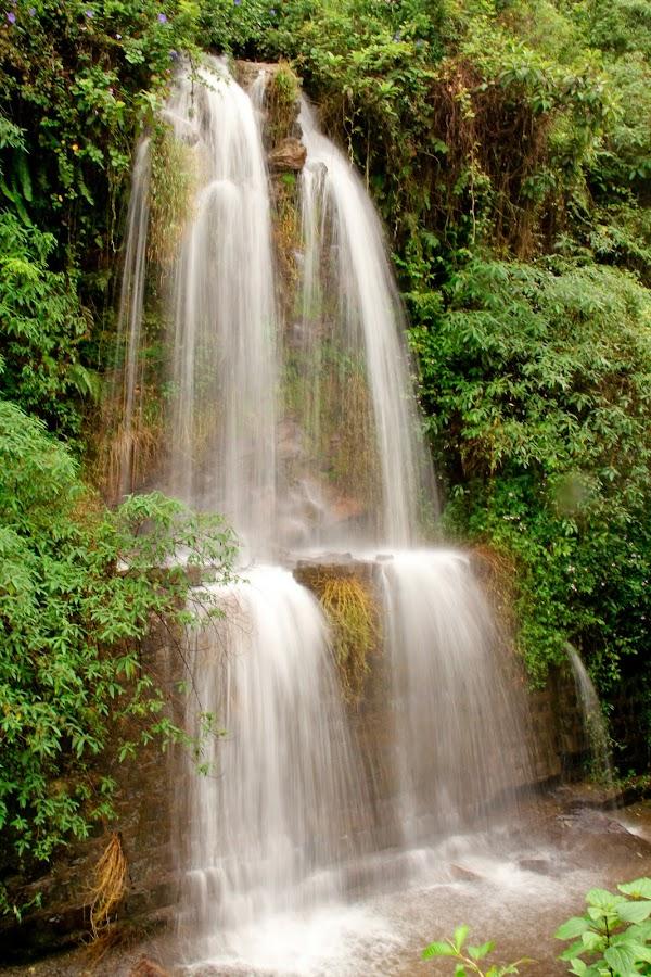 valparai waterfalls by Samuel Jebaraj - Nature Up Close Water ( water, ssamuel james, water falls, india, tamilnadu )