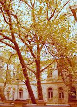 Photo: Odessahotellin piha 1976