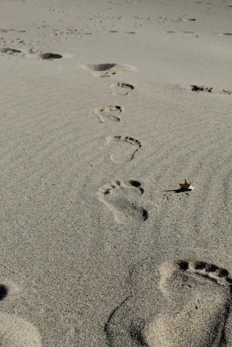 Orme nella sabbia di Ronnyna