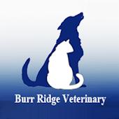 Burr Ridge Vet