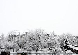 Photo: 04.02.2015