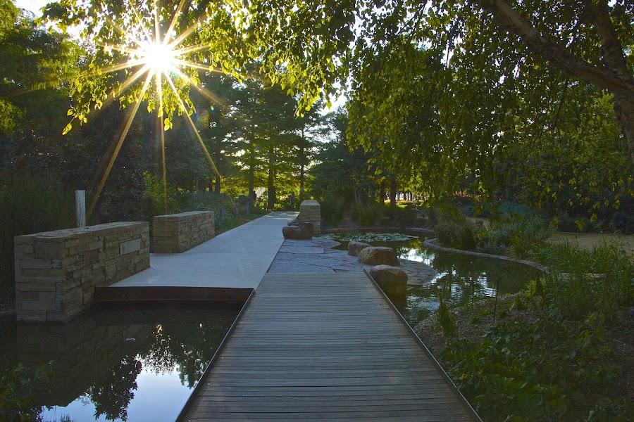 OKC Botanical Gardens by Kathy Suttles - City,  Street & Park  City Parks (  )