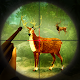 Download 3D Deer Hunter – Addictive Sniper Shooting game For PC Windows and Mac