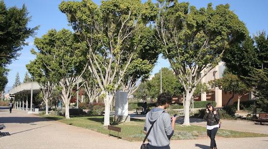 Estudiantes en el campus de la UAL en una imagen de archivo.