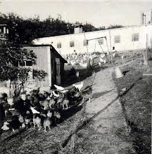 Photo: Kirkegade 15, Rødding Hønseri