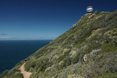 Fynbos und alter Leuchtturm am Cape Point