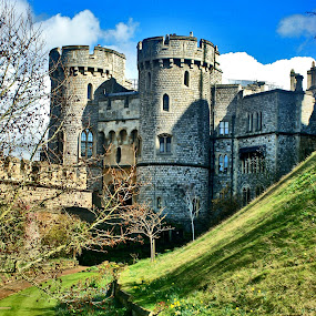 Windsor Castle  by Alka Smile - Buildings & Architecture Public & Historical (  )