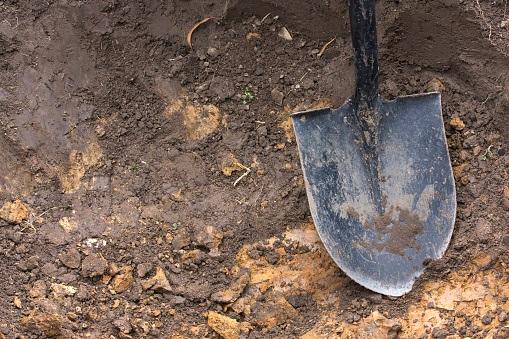 Body of missing nursing graduate found in boyfriend's backyard - HeraldLIVE