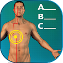 Acupuncture Quiz - Locations