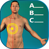Acupuncture Quiz 3D - Location