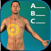 Acupuncture Quiz - Locations
