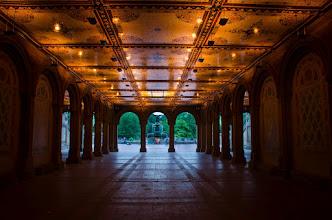 Photo: An evening in Central Park  #centralpark  #newyorkcity