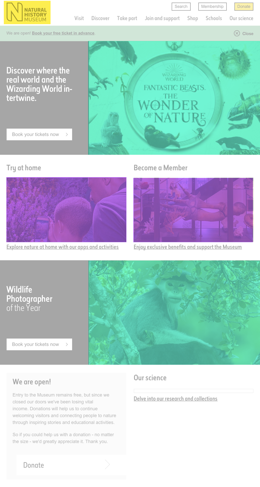 Website with varying image sizes
