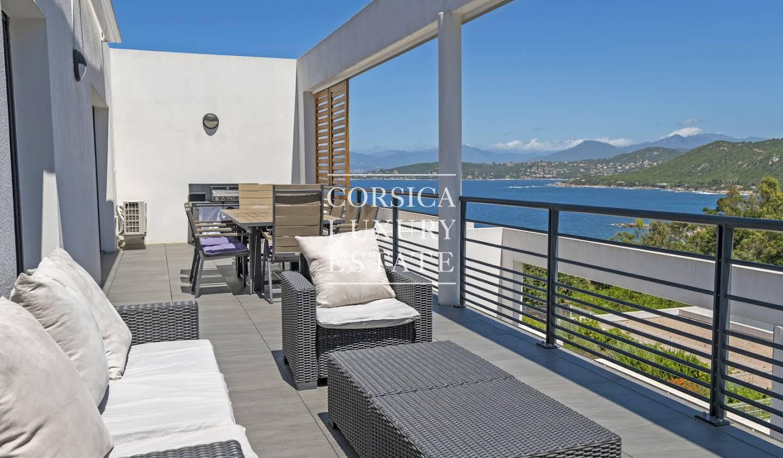 Appartement contemporain avec terrasse et piscine Pietrosella