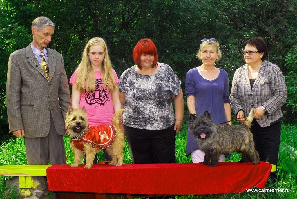 Фото победителей керн терьеров с экспертами на выставке Дерби