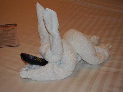 PB100047.JPG - Bunny controlling the room TV