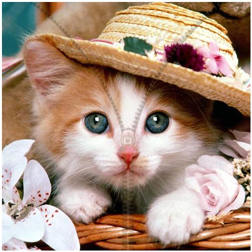キティベラ猫の画面のロック 個人化 App LOGO-硬是要APP