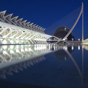 Calatrava Buildings, Valencia by Luis Felipe Moreno Vázquez - Buildings & Architecture Other Exteriors ( buildings, reflections, night, architecture, valencia, calatrava )