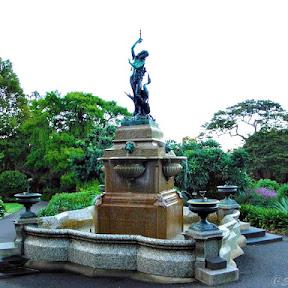 オーストラリアの大都市シドニーと共存する緑の楽園「王立植物園」