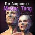 The Acupuncture Master Tung icon