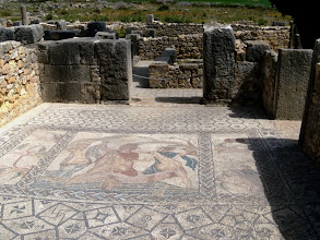 Photo: Volubilis - House of Venus ........... Huis van Venus