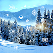 Winter Live Wallpaper