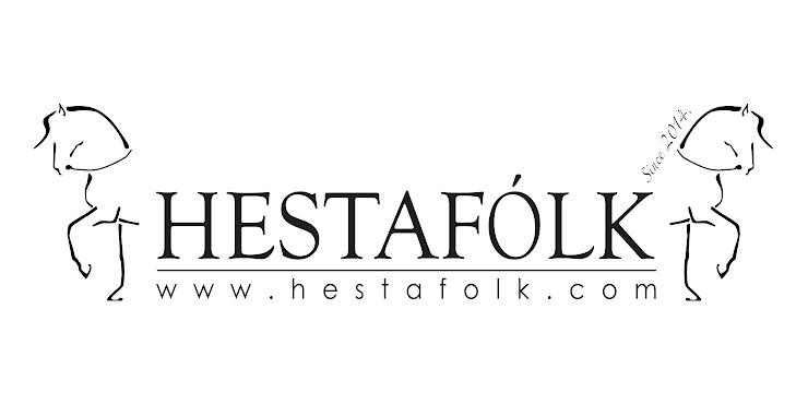 🇮🇸 🦄  Hestafólk - Die Akademie für Pferde und Menschen