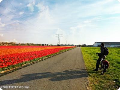 Circuit à vélo aux Pays-Bas de Leiden au parc de Keukenhof par veloiledefrance.com