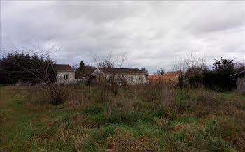 terrain à Etauliers (33)
