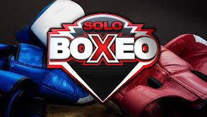 Solo Boxeo thumbnail