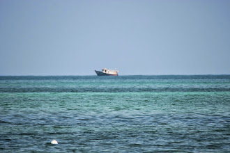 Photo: This ship should shipwrecked last Christmas from Haitii. We never found any news about it on the internet though