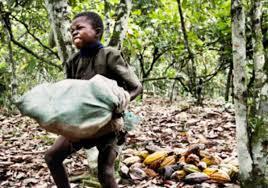 Trabalho escravo no Brasil: uma realidade que nos envergonha. Por ...