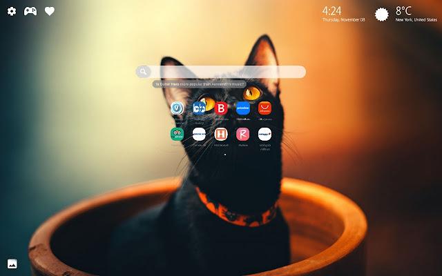 Black Cat Halloween New Tab Wallpaper HD