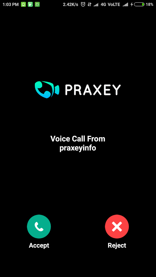 Praxey- screenshot
