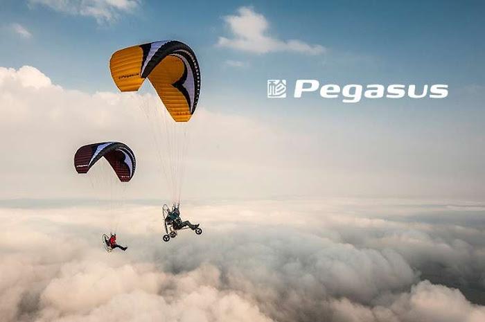Pegasus 24