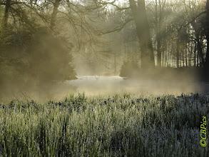 Photo: Natuur Ochtendnevel boven het water. Foto: Cees Boom.
