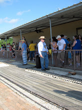 Photo: Barry Tobias (station master), Virginia Feitag (yellow shirt), and Allan Cleveland.   HALS 2009-0620
