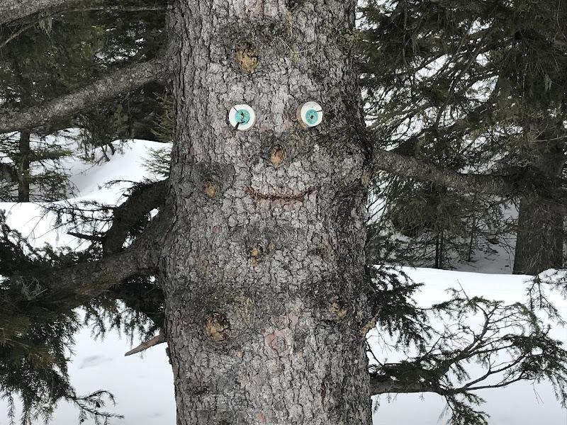 La risata di legno di carla_gioco