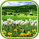 Spring Nature Live Wallpaper (app)
