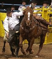 https://upload.wikimedia.org/wikipedia/commons/thumb/0/0f/Rodeo3b2004-12-21.jpg/170px-Rodeo3b2004-12-21.jpg