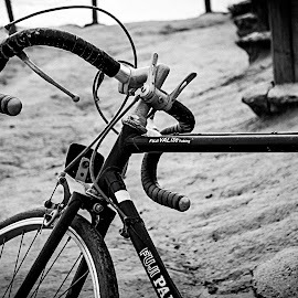 lonely bike by Parker Heath - Transportation Bicycles ( mystery, black and white, transportation, bicycle,  )
