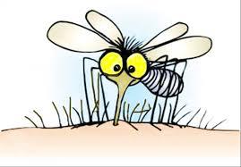 Billedresultat for mosquitoes bites cartoon