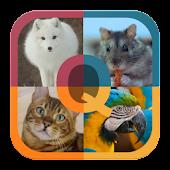 Animals Quiz Mod